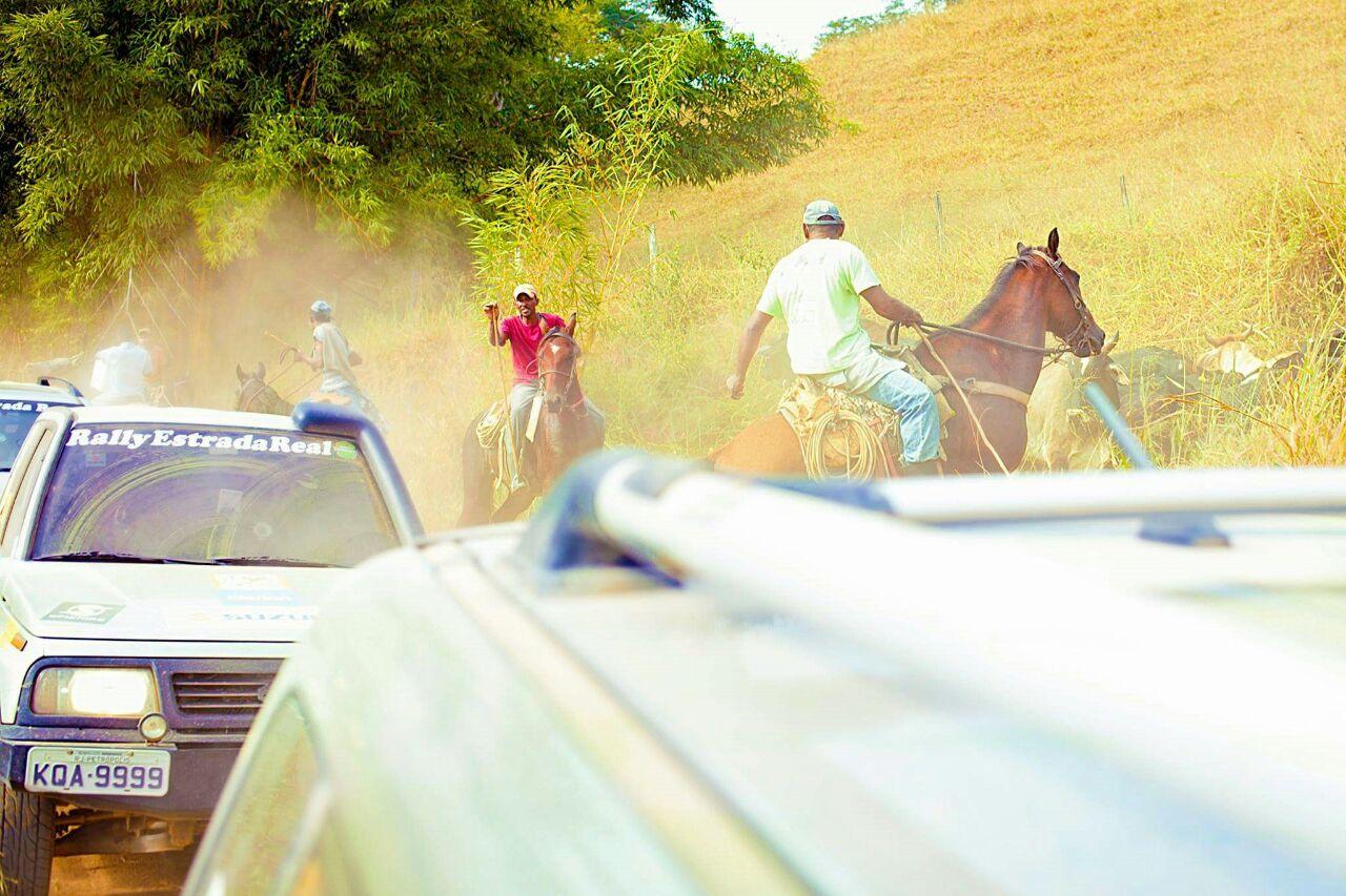 Fim das esperanças quando boiadeiros bloquearam por mais de 5 minutos a estrada penalizando mortalmente alguns carros, entre eles... Nossa equipe.
